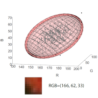 A Holistic Approach to Cross-Channel Image Noise Modeling and Its  Application to Image Denoising